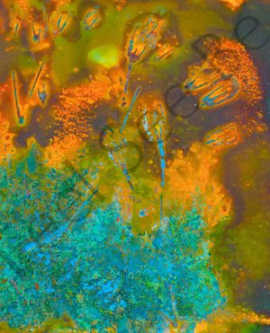 Onward - Feel See Be. Spiritual cooper art in Oxford